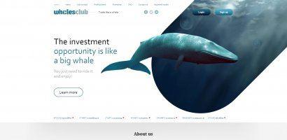 Whales club