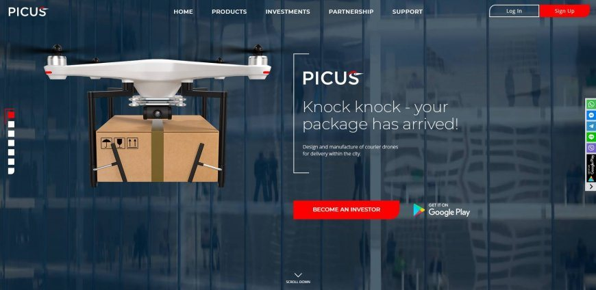 Review and recall of the Picus project